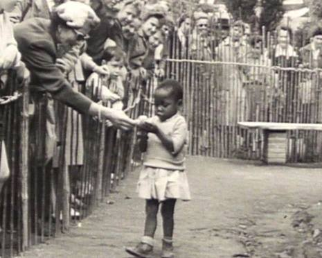 RACISMO E ZOOLÓGICO: TÔ FORA